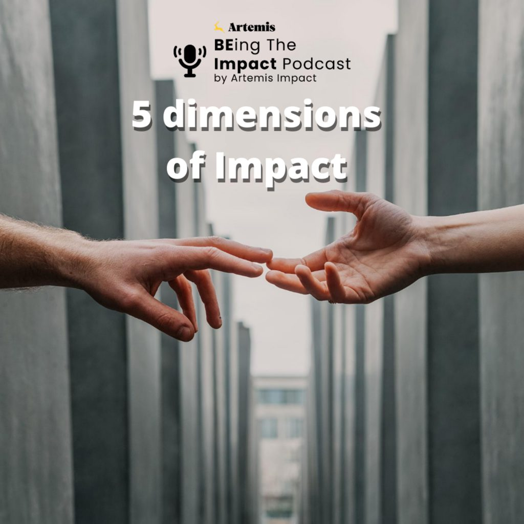 5 dimension of impact