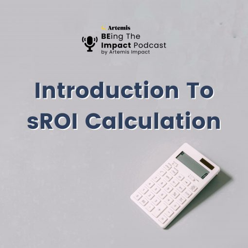 Introduction to sROI calculation
